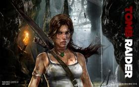 Картинка Tomb Raider, Лара Крофт, 2012 Games
