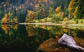 Обои water, germany, black forest