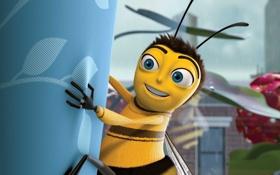 Картинка пчела, мультфильм, Bee Movie, Би Муви