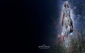 Картинка дух, the witcher, полуденница