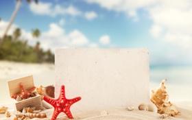 Картинка песок, море, пляж, лето, солнце, отдых, ракушки