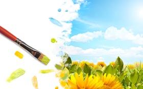 Обои поле, небо, солнце, облака, цветы, жёлтый, рисунок