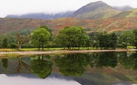 Картинка деревья, горы, озеро, гладь, отражение