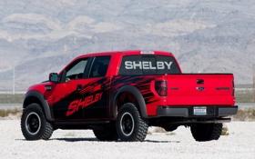 Обои Ford, Raptor, Ф-150, пикап, Шелби, F-150, Раптор