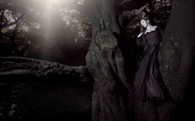Обои Tree, Wallpaper, Woman, Black Dress, Sun & Shade