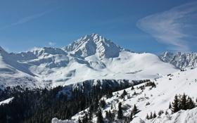 Картинка зима, снег, горы, фото, пейзажи, вид, леса