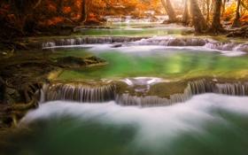 Обои лес, каскад, деревья, осень, река