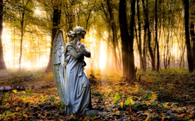 Обои angel, forest, trees, statue