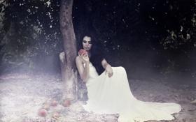 Обои девушка, яблоки, поза