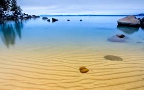 Обои дно, камни, песок, деревья, небо, озеро