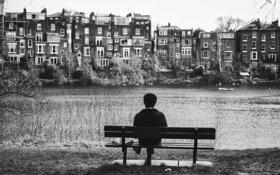 Обои скамейка, птицы, река, дома, канал, мужчина