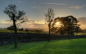 Картинка закат, поле, забор, деревья, лето