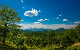 Картинка деревья, горы, панорама, долина