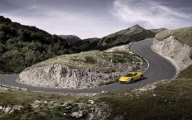 Картинка Авто, Дорога, Желтый, Феррари, Поворот, Ferrari, 458