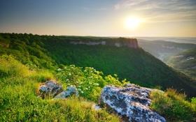 Картинка зелень, трава, солнце, пейзаж, горы, природа, камни
