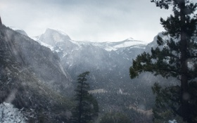 Обои лес, снег, горы, Winter