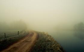 Картинка дорога, зелень, трава, деревья, пейзаж, природа, туман