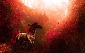 Картинка листья, животное, лошадь, хвост, копыта, красная грива