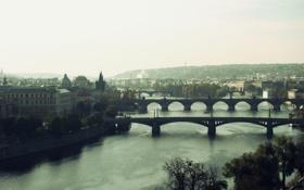 Обои мост, река, дома