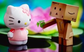 Обои Kitty, amazon, китти, подарок, коробка, настроение