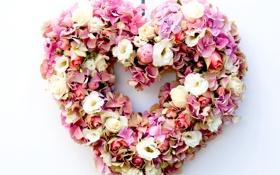 Картинка цветы, сердце, розы, гортензия, эустома