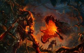 Обои джунгли, гарпия, ночь, варвары, дракон