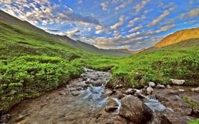 Обои камни, река, кусты, небо, облака, ручей, горы