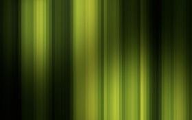 Обои оттенки, цвета. полосы, линии, текстура, зелёное