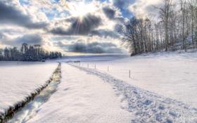 Обои зима, солнце, снег, природа