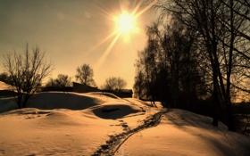 Картинка снег, деревья, село, winter, snow, sun, зимний день