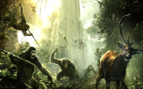 Обои обезьяна, Цезарь, Caesar, Планета обезьян: Революция, Dawn of the Planet of the Apes