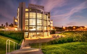 Картинка трава, ночь, дизайн, огни, здание, фонари, Калифорния