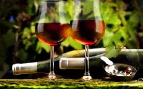Картинка листья, вино, красное, бокалы, бутылки