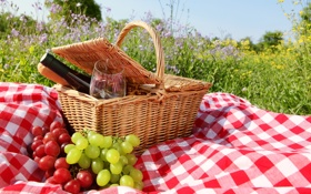 Обои grape, a bottle of wine, бутылка вина, корзина, a napkin, basket grass, травка