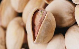 Обои макро, орехи, macro, вкусно, фисташки, pistachios