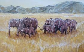 Обои трава, горы, арт, саванна, слоны, сухая, elephants