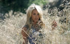 Картинка травы, поле, девушка
