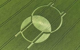 Картинка поле, круги, НЛО