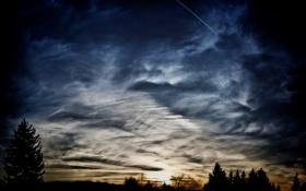 Обои небо, деревья, закат, природа, вечер