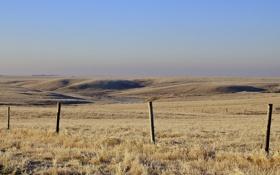 Обои пейзаж, поле, забор