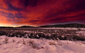 Картинка закат, пейзаж, wallpaper, небо, облака, восход, поле