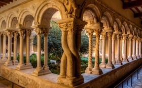 Обои дерево, Франция, двор, собор, колонны, монастырь, Экс-ан-Прованс