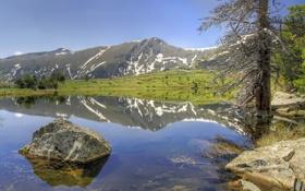 Картинка пейзаж, горы, озеро, отражение, дерево, камень, Природа
