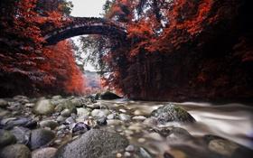 Картинка осень, мост, природа, река, камни