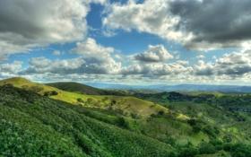 Картинка лес, небо, облака, холмы