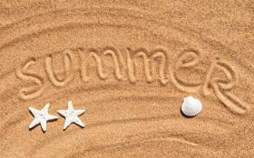 Обои песок, ракушки, море, лето