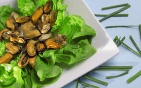 Картинка зелень, тарелка, салат, морепродукты, мидии