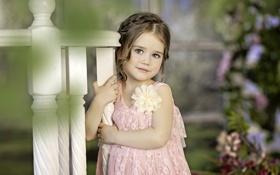 Картинка барышня, цветок, улыбка, красавица, платье, девочка