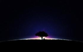Обои поле, небо, девушка, свет, деревья, ночь, фото