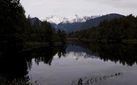 Обои вода, деревья, река, фото, пейзажи, вечер, реки